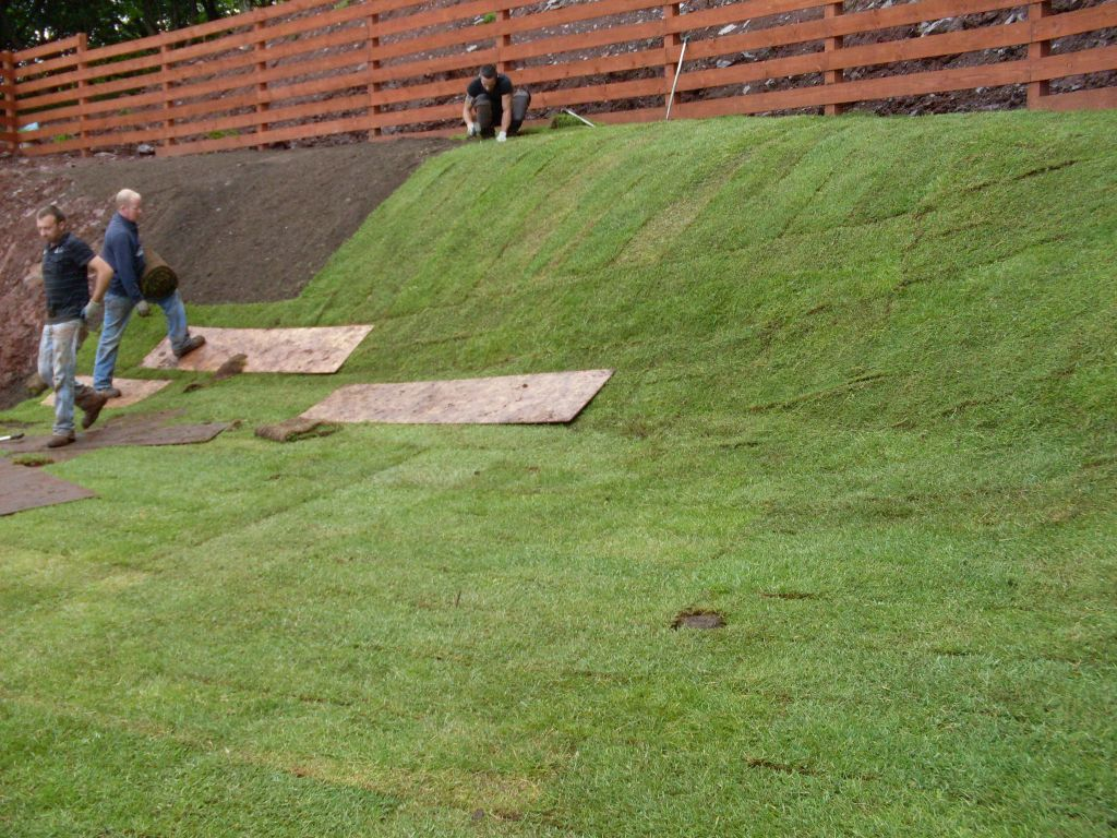 hillside 114